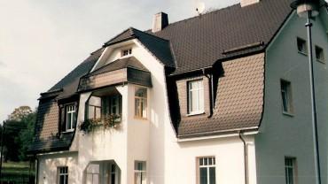 Biberschwanz-Ziegel Ton